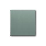 Wippe solo graumetallic Busch-Jaeger