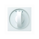Zentraplatte mit Drehknopf reinweiß glänzend für Jalousie-Drehschalter Gira